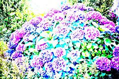 flower garden phantasy (1100971) (Le Photiste) Tags: art wow artwork digitalart creative photographers fantasy clay brightcolors soe fairplay giveme5 autofocus photomix ineffable digitalartwork prophoto phantasy friendsforever simplythebest finegold artandsoul bloodsweatandgears greatphotographers lovelyshot creativeart digitalcreations artyimpression beautifulcapture panasonicdmcfx30 damncoolphotographers myfriendspictures artisticimpressions simplysuperb thebestshot digifotopro afeastformyeyes artforfun simplybecause iqimagequality yourbestoftoday artofimages saariysqualitypictures hairygitselite lovelyflickr universalart blinkagain digitalartfx2 theredgroup photographicworld aphotographersview thepitstopshop showcaseimages mastersofcreativephotography creativeimpuls vigilantphotographersunitelevel1 cazadoresdeimágenes momentsinyourlife livingwithmultiplesclerosisms infinitexposure django'smaster bestpeople'schoice planetearthart planetearthculture flowergardenphantasy