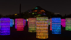 Water Towers by Bruce Munro-0526 (rob-the-org) Tags: desertbotanicalgarden phoenixaz brucemunro munroexclusive watertowers bybrucemunro cropped noflash f56 50sec iso400 26mm 18250mm topmarch2017