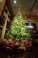 Christmas 2015 (brent flanders) Tags: christmas tree nikon christmastree christmaslights douglasfir d7000 afsdxnikkor1024mmf3545ged nikond7000 nikon1024mmf3545gedafsdxnikkorwideanglezoomlens