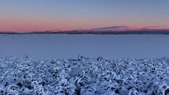 Ruoŧŧa (Lill-Eva Jenssen) Tags: blue landscape silence hour blåtime sápmi