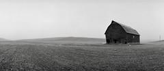 Barn, Washington (austin granger) Tags: winter cold field barn rural washington solitude frost time decay noblex crop impermanence bleak lonely farmer barren leaning fallow furrowed palouse austingranger