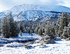 Tuolumne River, Yosemite High Country 5-15 (inkknife_2000 (6 million views +)) Tags: california usa snow mountains landscapes yosemitenationalpark snowontrees tuolumneriver tiogapassroad easternsierranevada snowonmountains cahwy120 dgrahamphoto