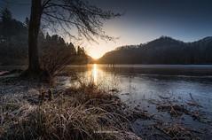 Cold Morning (Croosterpix) Tags: morning cold ice sun lake nature landscape nikon d610 tamron