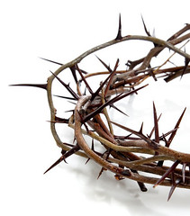 Crown of thorns on a white background (JulioEder) Tags: jesus crown christ friday christian religious christianity easter thorns background religion crucifixion white isolated suffer spiritual resurrection pain belief thorn faith symbol sunday jesuschrist sonofgod noone nobody whitebackground copyspace object unitedstatesofamerica