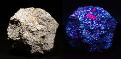 Porphyritic Granite and Ultra Violet View (Stan Celestian) Tags: igneous granite porphyry porphyriticgranite phenocryst feldspar orthoclase fluorescent