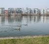 Westhafen (JohannFFM) Tags: westhafen frankfurt