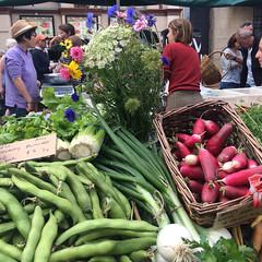 All the unaffordable organic loveliness - Salamanca Market