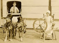 Spinning a Tale of Dogs in Glasses (Cropped) (Alan Mays) Tags: ephemera postcards realphotopostcards rppc photos photographs foundphotos portraits children boys girls clothes clothing ties neckties dresses caps dogs animals glasses eyeglasses spectacles pipes smoking hats tophats dogcarts carts spinningwheels spinning chairs strange unusual puzzling amusing antique old vintage