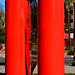 Entre les deux colonnes rouge / Nicola Salvatore