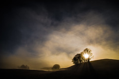 Derniers Feux (PaxaMik) Tags: soleil soleilcouchant sunset campagne montagne countryside country plateauderetord arbres arbredhiver rayonsdesoleil rayoflight soir evening brume brouillard mist misty ciel sky clouds cloudy tree trees