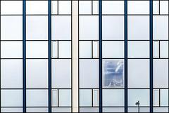 Windows (Maerten Prins) Tags: nederland netherlands amsterdam glass facade window line reflection distortion symmetry mirror blue ruyterhuys grid squares abstract lines pattern minimal minimalism