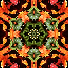 Kaleido Abstract 1560 (Lostash) Tags: art edited abstract patterns symmetry shapes kaleidoscopes
