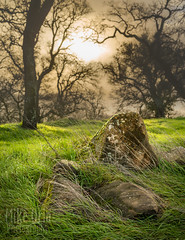 Clayton Sunshower (mikeSF_) Tags: california conracosta county clayton marshcreek brentwood concord walnutcreek outdoor hills bokeh dof pentax dfa55 28 rocks moss rain trees forest woods fog sun sunrise sunset mikeoria