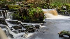 2017-01-17 Rivelin-7417.jpg (Elf Call) Tags: nikon rivelin river yorkshire water stream 18105 sheffield steppingstones waterfall d7200 blurred