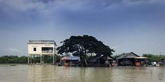 Kompong Phluk, la aldea del Lago Tonlé Sap (Camboya -ព្រះរាជាណាចក្រកម្ពុជា-) (Egg2704) Tags: camboya cambodia asia tonlésap kompongphluk egg2704 ព្រះរាជាណាចក្រកម្ពុជា