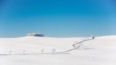 street splits the snow (phreekz.chmee) Tags: street panorama snow white blue sky minimal