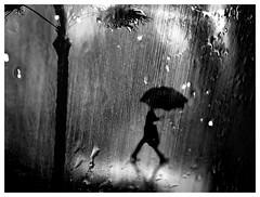 Lisbon in The Rain or The Year of the Death of Ricardo Reis (P. Correia) Tags: lisbon 2017 lisbonne rain lluvia lisboa pluie pcorreia chuva bw silhouette man ricardoreis josésaramago