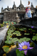 Lotus Ballade (grapfapan) Tags: bali indonesia temple lotus blossom buddhistic