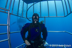 20151002-141301-100 (andy_deitsch) Tags: nautilus 2015 guadalupeisland