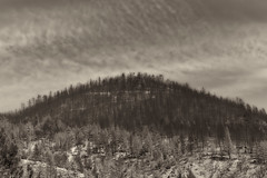 Washington Fire, Near Markleeville, CA (Mr_Flugel) Tags: blackandwhite bw sepia landscape fire