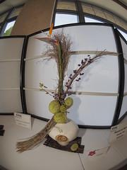 "Asclepias, Bird of Paradise, Beauty Berry & Dried Grass by Anna Hutchinson ""Koryu School"". (nano.maus) Tags: fisheye lauritzengardens japaneseflowerarrangement omahabotanicalsociety japaneseambiencefestival"