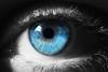 Blue Eye (Valentina Conte) Tags: blue light portrait detail macro eye shadows occhio ciglia macromondays canon100d rebelsl1 valentinaconte