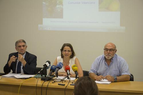 Presentación Aforo Citrícola (24-09-2015)