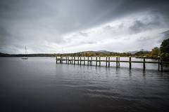 All in a row (Natalie Cosgrove) Tags: autumn seagulls lake boat district windermere