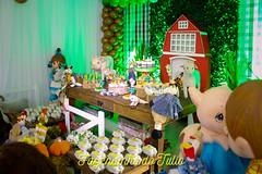 FAZENDINHA DO TULIO 2015 FINAL-1 (agencia2erres) Tags: aniversario 1 infantil festa ano fazenda fazendinha