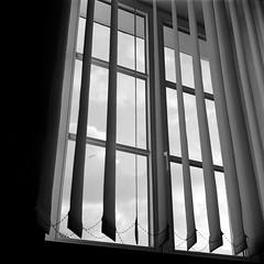 Window (Kuba wieca) Tags: 6x6 mediumformat poland warsaw fujineopanacros100 fujifilmneopan100acros start66s film:brand=fuji film:iso=100 film:name=fujineopanacros100 filmdev:recipe=10499