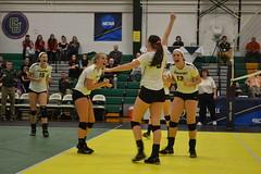 DSC_0346 (BrockportAthletics) Tags: new york college golden university state tournament playoffs volleyball ncaa potsdam eagles framingham clarkson the regionals brockport 2015 sunyac