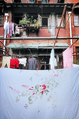 bed sheet with flowers and butterflies. (shanghai junkie) Tags: shanghai laundry f71 18mm da1855