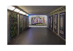 Tend the Soil (Pictures from the Ghost Garden) Tags: street urban streetart art bristol landscape graffiti nikon politics 28mm voigtlnder subways stokescroft colorskopar d7100