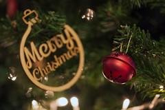 Merry Christmas everyone (360/366) (AdaMoorePhotography) Tags: christmas xmas red green yellow oaken nikon d7200 105mm 105mmf28
