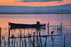 Boatman next to Herons, L'Albufera. (brianparra) Tags: boat boatman sunset orange heron birds water reflection lake
