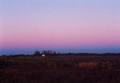 My neighborhood. (Hijo de la Tierra.) Tags: film analog 35mm landscape grain violet blue sky sunset winter countryside nature uruguay progreso canelones