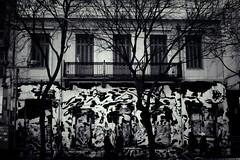City zebra (Konstantinos Karnaros) Tags: city street house building old graffity black white zebra