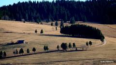 DSCN0836 (derudo) Tags: südschwarzwald stohren münstertal vogesenblick blickindierheinebene