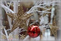 353-366, Adventskalender Nr. 18 (julia_HalleFotoFan) Tags: advent adventskalender weihnachtszeit stern