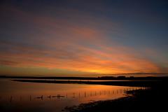 Amanhecendo (Eduardo Amorim) Tags: amanhecer amanecer alvorada alborada sunrise pampa campanha fronteira dompedrito riograndedosul brazil brésil brasil sudamérica südamerika suramérica américadosul southamerica amériquedusud americameridionale américadelsur americadelsud