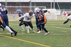 4D3A2986 (marcwalter1501) Tags: minotaure tigres strasbourg footballaméricain football sportdéquipe sport exterieur match nancy