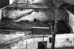 The man who was cold (pascalcolin1) Tags: paris13 homme man froid cold photoderue streetview urbanarte noiretblanc blackandwhite photopascalcolin
