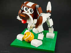 Not Sir Andy Murray (billyburg) Tags: grubaluk idefix springer spaniel not sir andy murray cute puppy pup tennis ball poseable