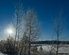 Backlit Frost (kevin-palmer) Tags: grandtetonnationalpark nationalpark wyoming moran december newyearseve winter cold snowy snow white clear sunny sunshine blue sky frosted frost frosty oxbowbend nikond750 tamron2470mmf28 snakeriver ice icy frigid