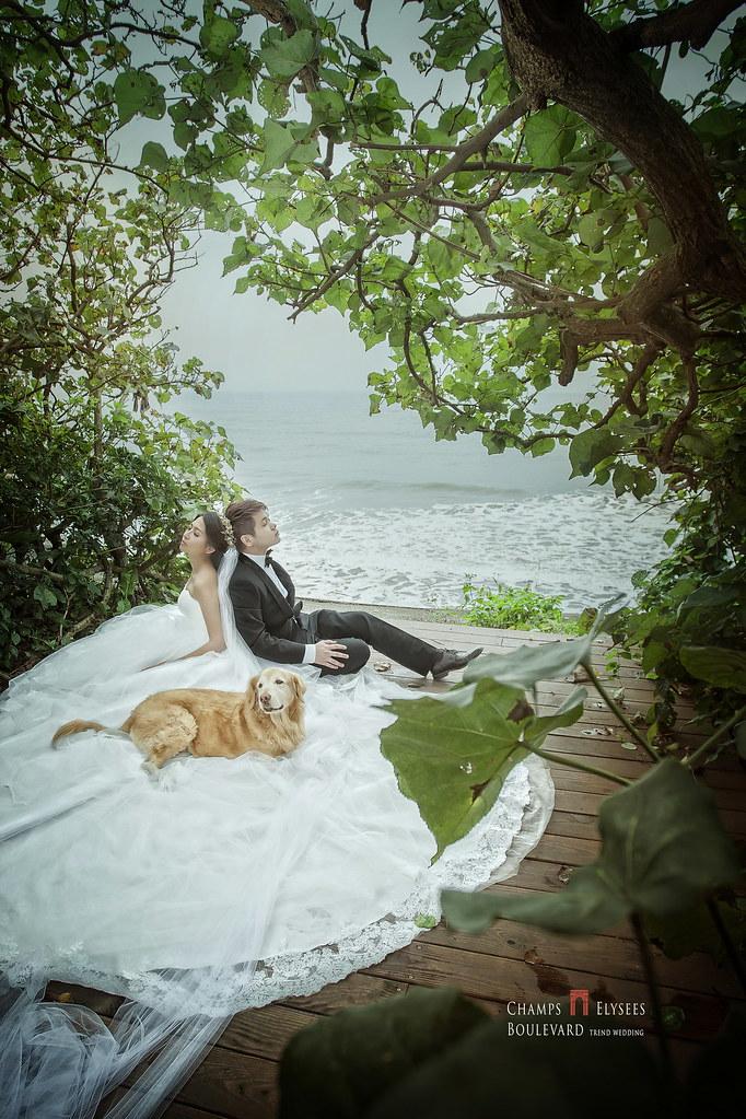 淡水莊園,新人婚紗,拍攝地點