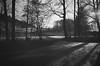 winter day (gato-gato-gato) Tags: 35mm asph ch iso400 ilford ls600 leica leicamp leicasummiluxm35mmf14 mp messsucher noritsu noritsuls600 schweiz strasse street streetphotographer streetphotography streettogs suisse summilux svizzera switzerland wetzlar zueri zuerich zurigo z¸rich analog analogphotography aspherical believeinfilm black classic film filmisnotdead filmphotography flickr gatogatogato gatogatogatoch homedeveloped manual mechanicalperfection rangefinder streetphoto streetpic tobiasgaulkech white wwwgatogatogatoch zürich manualfocus manuellerfokus manualmode schwarz weiss bw blanco negro monochrom monochrome blanc noir strase onthestreets mensch person human pedestrian fussgänger fusgänger passant