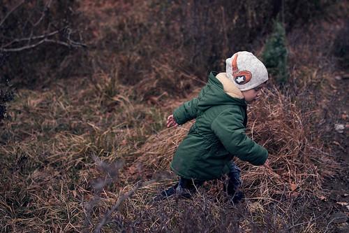 Little explorer | Маленький исследователь