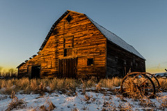 Golden Hour Barn (Stubble Jumper) Tags: alberta abandoned barn prairie history