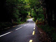 The Road (RWGrennan) Tags: road street lines curve trees green light ireland ringofkerry ring kerry county fuji hs10 rwgrennan rgrennan ryan grennan europe travel killarney national park 2012