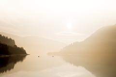 S E R E N I T Y (darylswalker) Tags: canon canon6d scotland glencoe landscape sunrise lochlomand loch swan mirror